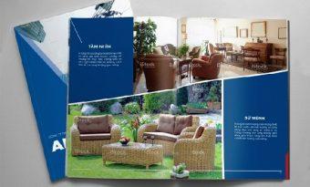 In Brochure cần quan tâm đến điều gì?